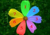 Izvēlieties vienu ziedlapiņu un uzziniet, kad jūsu vēlēšanās piepildīsies