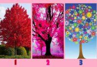 Koks, kas jūs piesaista visvairāk, parādīs jūsu sirsnības līmeni.