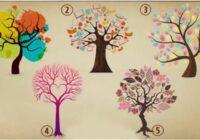 Izvēlētais koks jums pastāstīs par jūsu dzīves ceļu